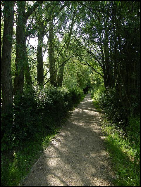 Fiddler's Island footpath