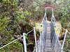 Over the Mangaorua Stream.
