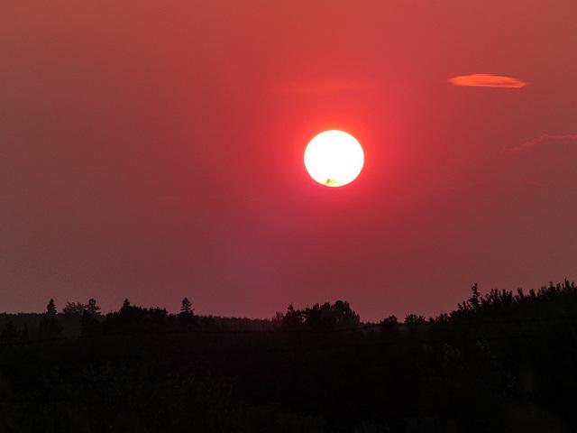 Sunset over Weaselhead