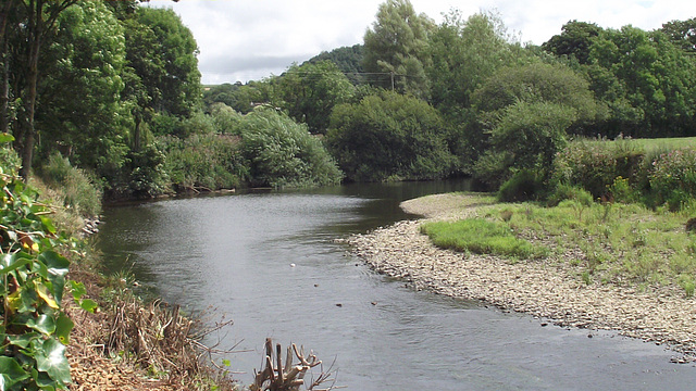 The river Torridge further upstream - quite narrow now
