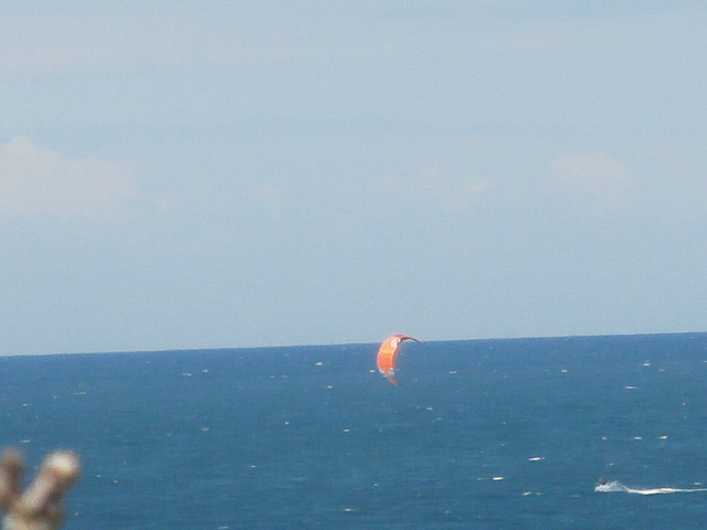 A kite-surfer was having a great time in the wind