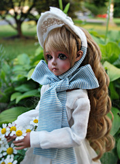 1-10 Project: 1 A Beautiful Doll