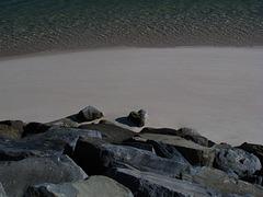 Stones of Troia