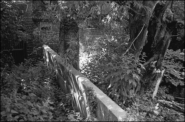 R. Wandle nr Plough Lane.