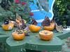 Butterflies Feeding at NHM (2) - 2 August 2014