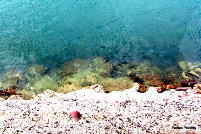 Sea Laps the Concrete.