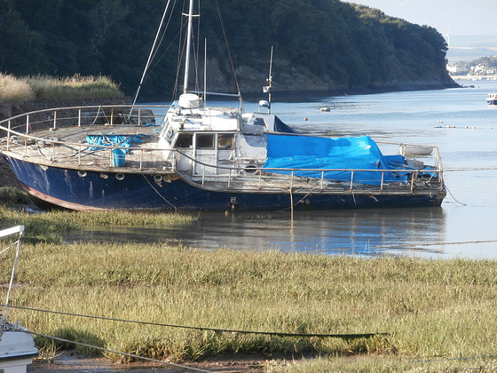A boat beached on the marshland