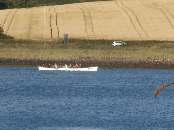 6 man rowing boat - practicing for the Water Festival