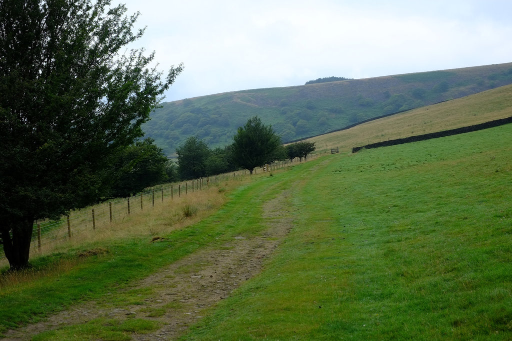 Mossy Lea Farm Track from Old Glossop