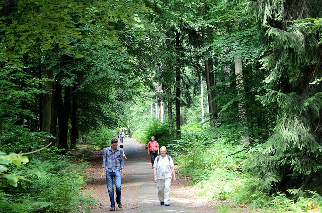 2014-07-06 08 Hinterhermsdorf - Niedere Schleuse