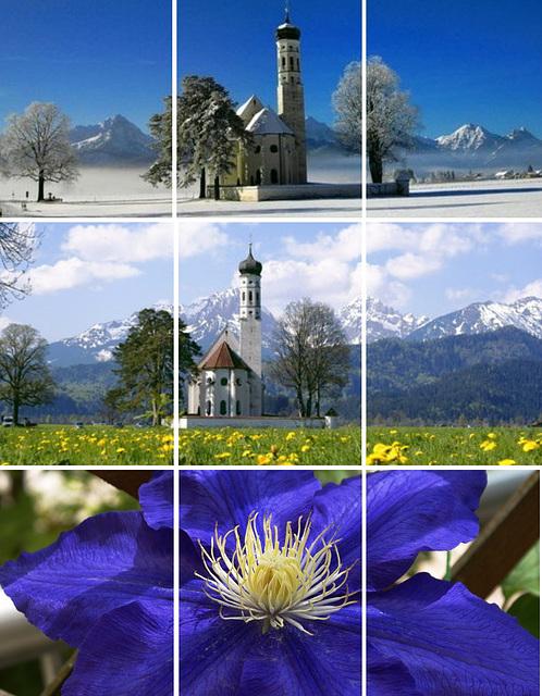 Wallfahrtskirche St. Coloman im Winter und im Frühjahr mit Clematis. ©UdoSm