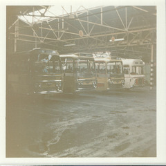 Yelloway line up of holiday expresses - August 1972