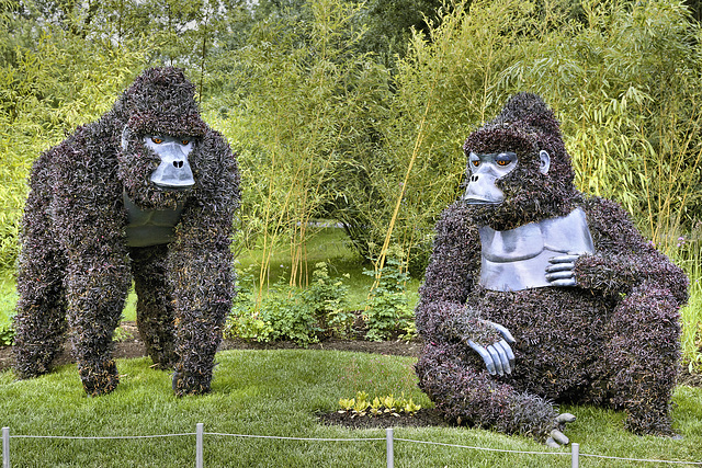 Threatened Giants – Mosaïcultures Internationales de Montréal, Botanical Garden, Montréal, Québec