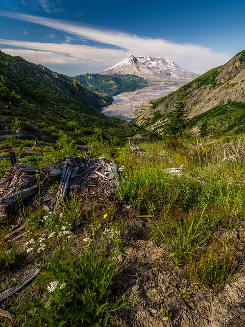 Norway Pass, Mt St Helens