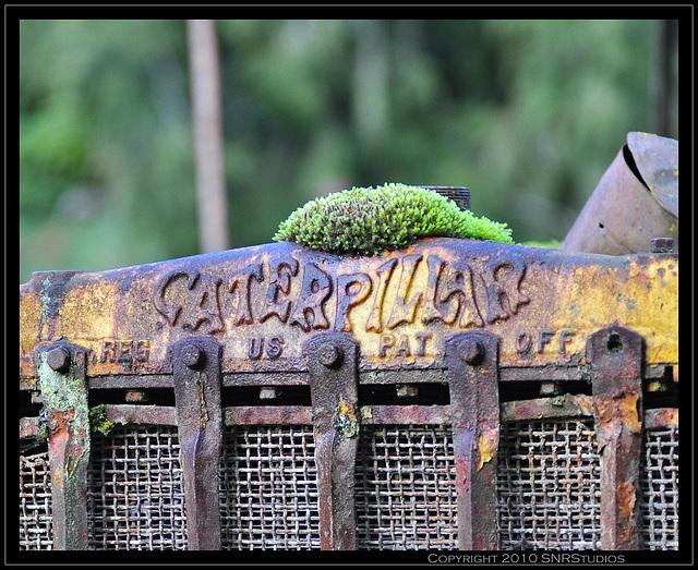 Caterpillar In Retirement