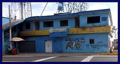 Tags & seafood / Fruits de mer & graffitis.