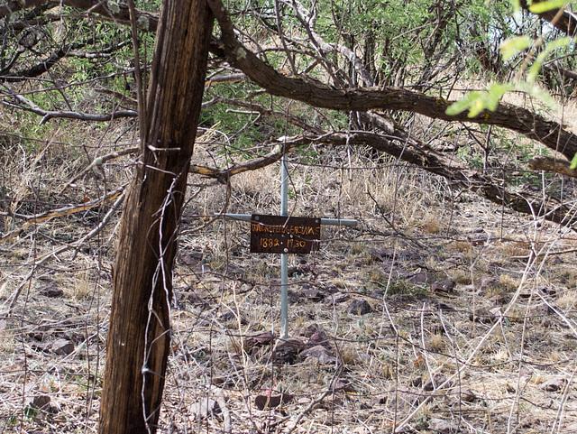 Coronado NF Harshaw cemetery (2205)