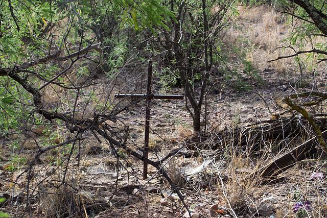 Coronado NF Harshaw cemetery (2206)