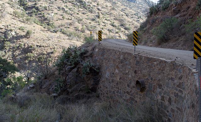 Corondao NF Box Canyon Road #62 (2231)