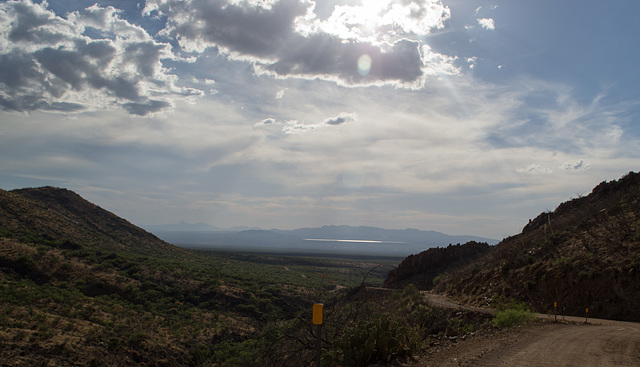 Corondao NF Box Canyon Road #62 (2237)