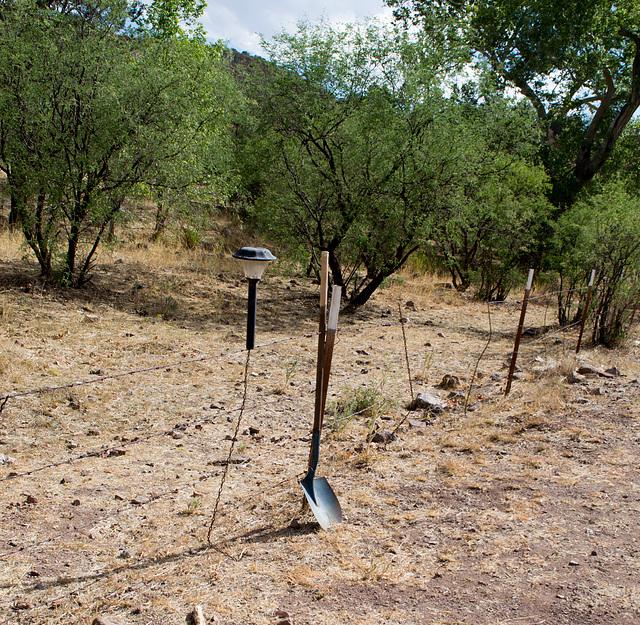 Coronado NF Harshaw cemetery (2216)