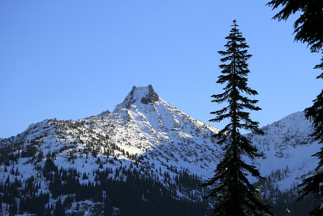 Cutthroat Peak from the Heather Pass Trail