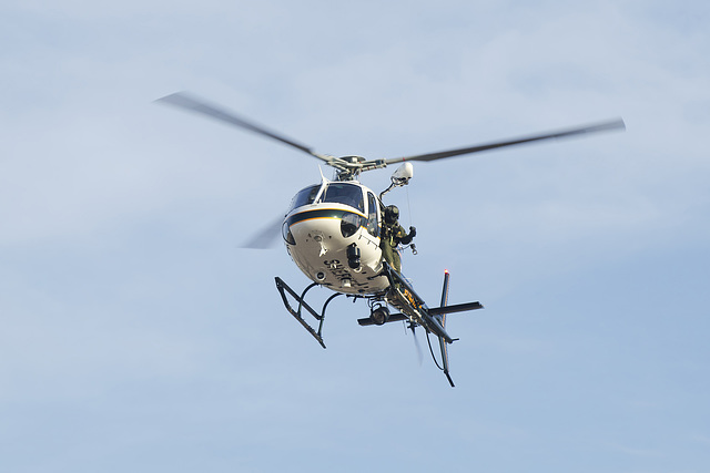 Eurocopter AS350 N599SD
