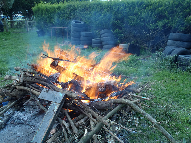 funeral pyre for our piglet Grissy