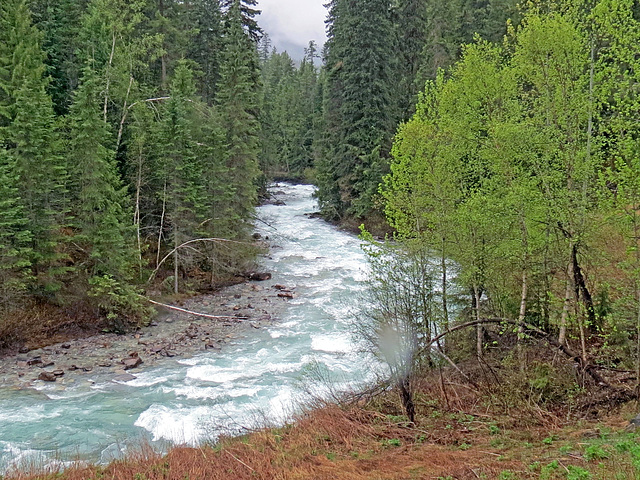 The turquoise river