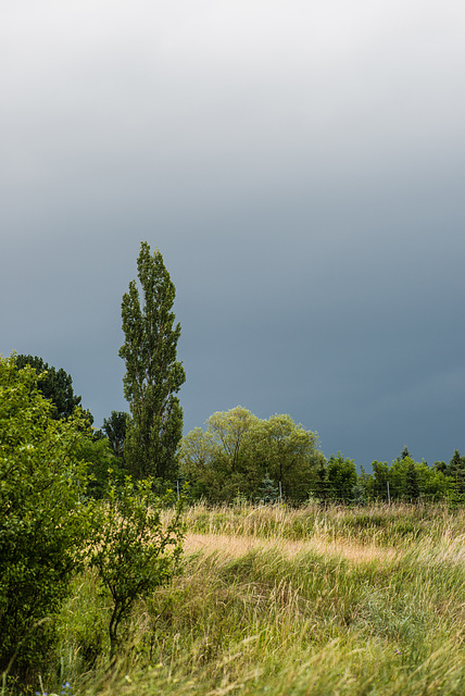 Gewitter zieht auf - 20140711