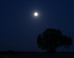"""Ce soir c'est la """"super lune"""""""
