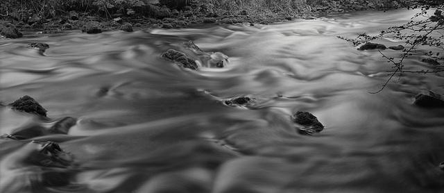 Derbyshire Wye - In Monsal Dale