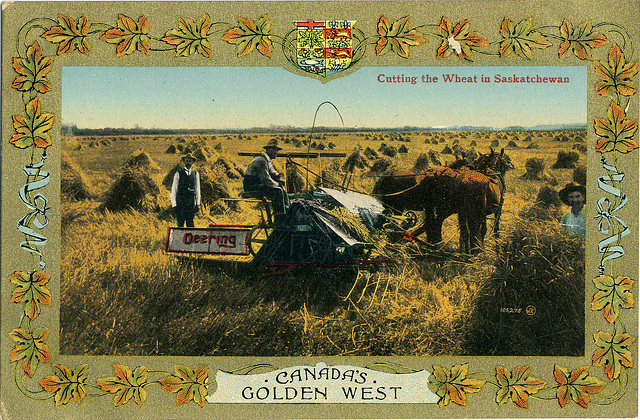 3975. Cutting the Wheat in Saskatchewan