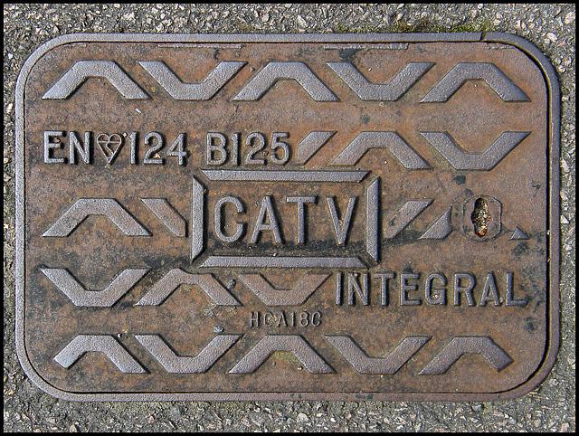 CATV integral