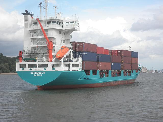 Feeder-Containerschiff  Dornbusch auf der Elbe