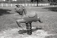 Ride Your Pony