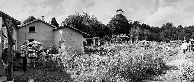 Rosey's Garden (2)