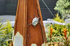 Metallic Lady Bug –  Le jardin de verre et de métal, Botanical Garden, Montréal, Québec