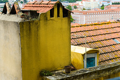 roofs 06