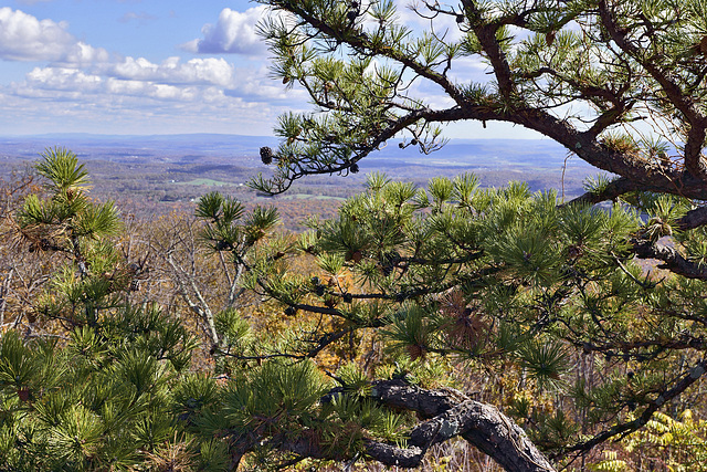 Down in the Valley – High Point State Park, Sussex County, New Jersey