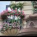 Vienne Hundertwasser Haus