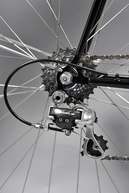 Right rear dropout, 12-25 Campagnolo Record cassette, and Campagnolo Chorus 10 speed derailleur