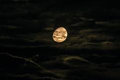 Mond - 20140906