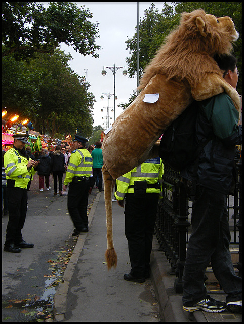 do not let your lion foul the street