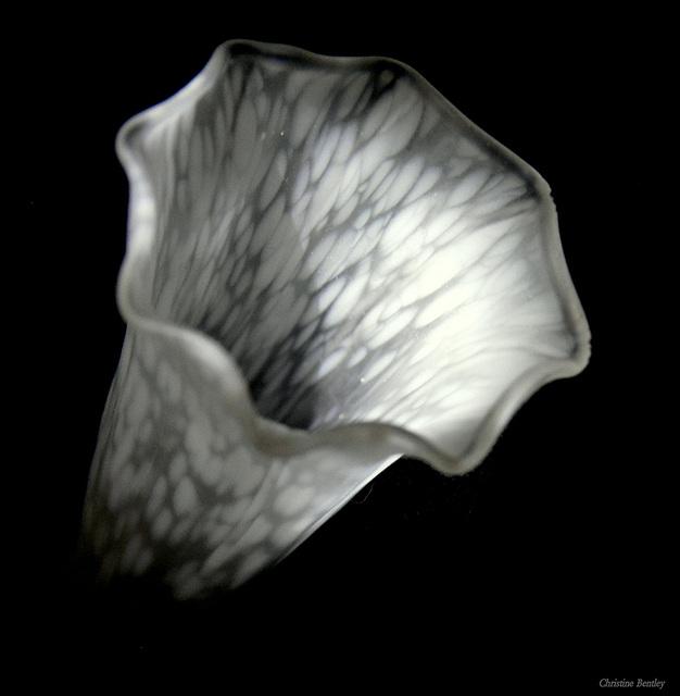 Tulip Style Lamp Shade