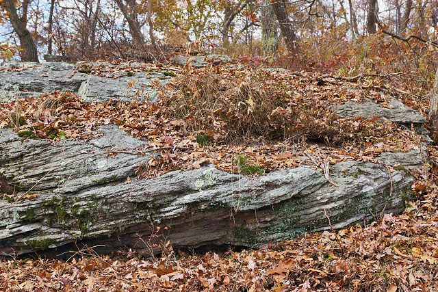 The Layered Look – High Point State Park, Sussex County, New Jersey