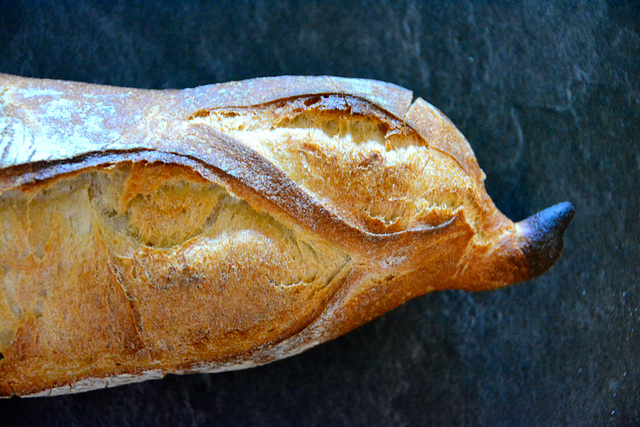 Bayeux 2014 – French bread