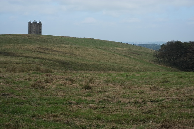 The Cage & Red Deer at Lyme Park