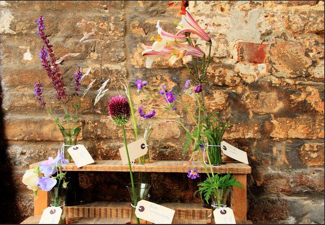 Plant Identification, Sissinghurst Style