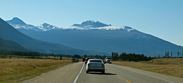 Yellowhead Highway near Jasper, Alberta